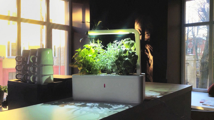 smart_herb_garden